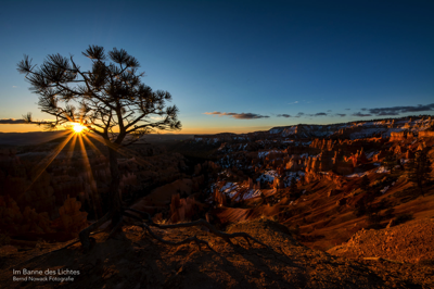 First Light (Bryce Canyon)